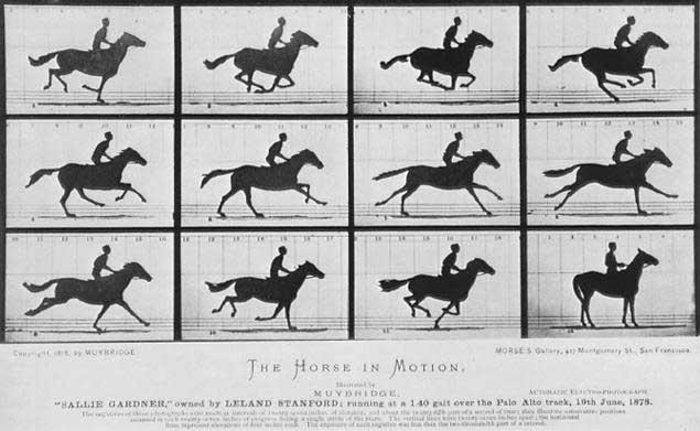 Chụp ảnh ngựa phi tốc độ nhanh 1877