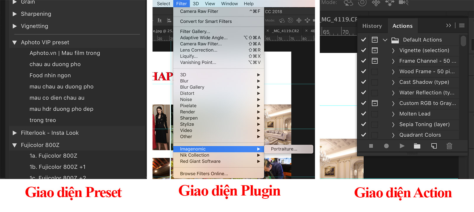 Preset, plugin và action