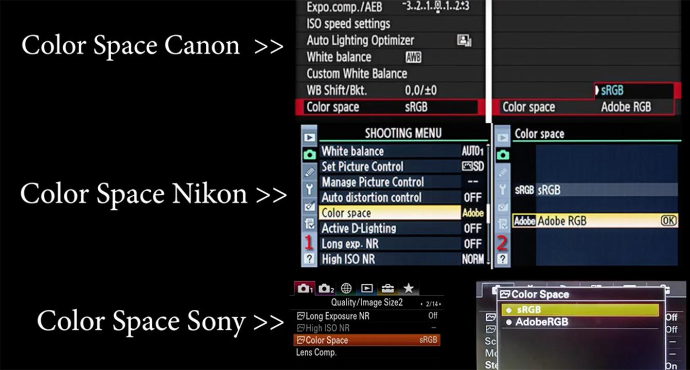 Hệ màu của máy ảnh